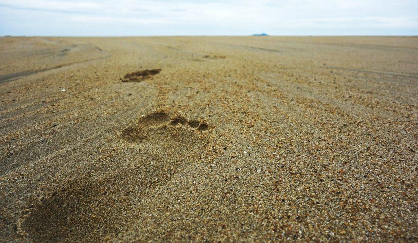 Footsteps of Jesus