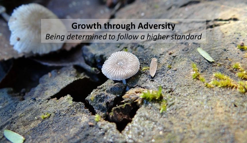 Growth Through Adversity
