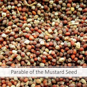 The Mustard Seed Parable