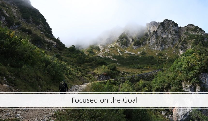Focused on the Goal